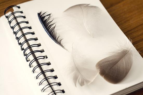 Nature Art Journal ©Kendra Kantor from Like a Bird Blog