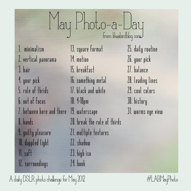 "May Photo A Day from likeabirdblog.com"""
