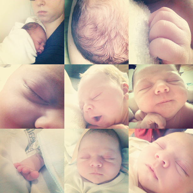 Picture 22: Baby Jeff April 28, 2012 ©Kendra Kantor:instragram grid from day 1 of life