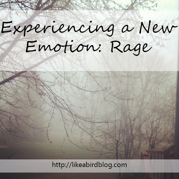 Experiencing a New Emotion: Rage