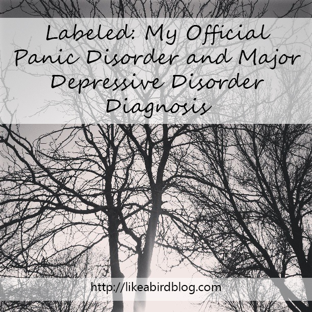"""""""Labeled: My Official Panic Disorder and Major Depressive Disorder Diagnosis"""
